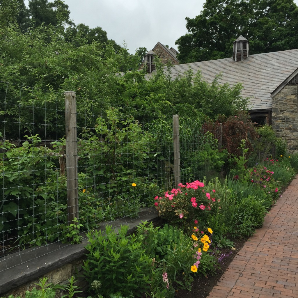 Stone Barns Food & Agricultural Center, Pocantico Hills, NY. Photo taken June 2015. © blissandradiance.com